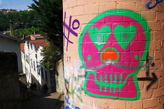 Petit Crâne (Atreides59) Tags: rhone rhône lyon france graff graffiti rouge red vert green rose pink violet urban urbain street pentax k30 k 30 pentaxart atreides atreides59 cedriclafrance