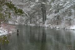 quabbinreservoir2019-94 (gtxjimmy) Tags: nikond7500 nikon d7500 winter snow quabbinreservoir swiftriver ware belchertown massachusetts watersupply newengland quabbin
