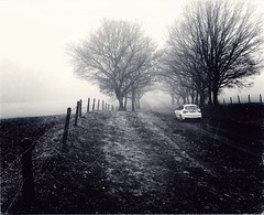 Drive by (john29ch) Tags: bwphotography winter countryside trees misty fog streets car blackwhite bnw retro