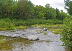 South Branch Pond (RockN) Tags: southbranchpond stream august2016 baxterstatepark patten maine newengland 1000placesusa