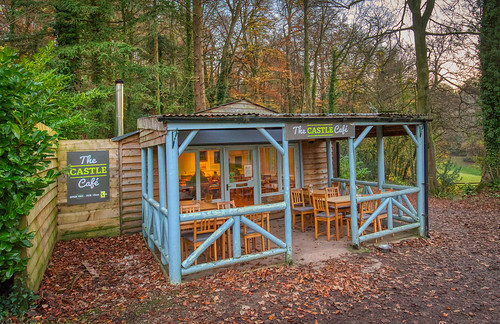 The Cafe in the Woods
