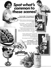 (Will S.) Tags: scans naparimagirlshighschooldiamondjubilee19121987recipebook 1988 cookbook trinidadandtobago scanned bw angostura bitters