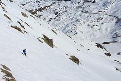In Picchiata sul Sempione (Roveclimb) Tags: mountain montagna alps alpi vallese valais svizzera suisse sempione simplon ossola scialpinismo skitouring winter inverno snow schnee neve galehorn simplonpass engiloch slope discesa ritzitalli