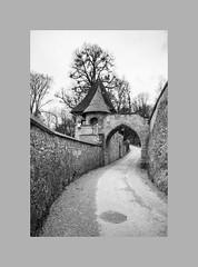 Salzburg (Austria)_Castle VII (nikolys) Tags: castle architecture history austria salzburg nikon z6 bw blackandwhite
