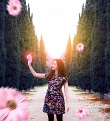 Blossom (Beatriz Abelenda) Tags: photoshop lightroom nikon 50mm light flower flor flores flowers girl woman conceptual