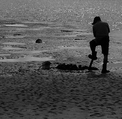 The Worm Digger (Rand Luv'n Life) Tags: odc our daily challenge worm digging mudflat mission bay san diego california man silhouette shovel water sand holes bucket monochrome blackandwhite black white outdoor
