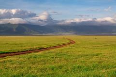Daybreak in the Ngorongoro Crater (Jill Clardy) Tags: africa tanzania vantagetravel safari 201902214b4a0789 ngorongoro crater conservation area daybreak dawn sunrise savanna grasses dirt road clouds cloudy caldera