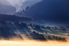 I love the morning hours (Rita Eberle-Wessner) Tags: landscape landschaft sonnenaufgang sunrise sunbeams sunrays schattenstrahlen sonnenstrahlen morgen morgennebel morningmist wald forest bäume trees rural ländlich birds vögel vogelschwarm acker äcker wiesen fields meadows odenwald