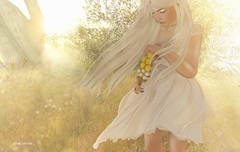 Is it really me you're missing.. (Sistine Kristan (Sisely) - Toolbox Chicks) Tags: blog photography sl secondlife flowers spring bouquet mesh catwa ersch tableauvivant wind blown minosa