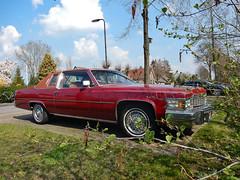 Cadillac Coupé DeVille d'Elegance 1977 (N3703) (Le Photiste) Tags: clay generalmotorscompanygmcadillacmotorcardivisiondetroitmichiganusa cadillaccoupédevilledelegance cc 1977 cadillacdevilleseriesmodel6d47coupédevilledelegancefisherbody americanluxurycar oddvehicle oddtransport rarevehicle simplyred mostrelevant mostinteresting perfectview beautiful nikon nikoncoolpixs9900 afeastformyeyes aphotographersview autofocus artisticimpressions alltypesoftransport anticando blinkagain beautifulcapture bestpeople'schoice bloodsweatandgear gearheads creativeimpuls cazadoresdeimágenes carscarscars digifotopro damncoolphotographers digitalcreations django'smaster friendsforever finegold fairplay fandevoitures greatphotographers groupecharlie peacetookovermyheart hairygitselite ineffable infinitexposure iqimagequality interesting inmyeyes livingwithmultiplesclerosisms lovelyflickr myfriendspictures mastersofcreativephotography niceasitgets photographers prophoto photographicworld planetearthbackintheday planetearthtransport photomix soe simplysuperb showcaseimages slowride simplythebest simplybecause thebestshot thepitstopshop theredgroup thelooklevel1red themachines vividstriking wow wheelsanythingthatrolls yourbestoftoday oldtimer
