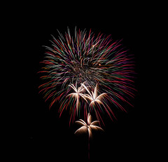 Fireworks (masennott11) Tags: fireworks firework colorful explosion colors longexposure cropped different awesome streaks fourth july fourthofjuly new years eve newyearseve