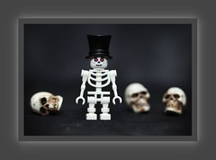 Skeleton with Red Eyes and a Top Hat (N.the.Kudzu) Tags: tabletop toys lego miniature skeleton skulls canondslr meike 85mmf28 macro lens canon430ex flash photoscape frame