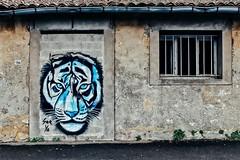 Oeuvre de See Ya (Isa-belle33) Tags: architecture urban urbain city ville window fenêtre door porte wall mur old ancien fujifilm bordeaux street streetphotography abandoned streetart streetartbordeaux