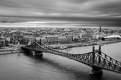 DSC_0082 (peter-agoston) Tags: budapest pest danube szabadsaghid hungary blackandwhite blackandwhitestreet gellerthegy gellerthill city cityscape