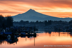 Happy Monday! (Gary Grossman) Tags: sunrise dawn hood mountain harbor boats houseboats portland winter northwest oregon cascades beauty landscape garygrossmanphotography portlandharbor pacificnorthwest mthood snowcapped wintersunrise