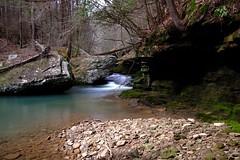 Up a Creek. (coldweatherblue) Tags: creek tn fuji xt1 longexposure nature wild woods forest cumberland