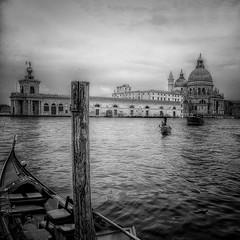 Venezia : POV - 54 (Roberto Defilippi) Tags: 2019 42019 rodeos robertodefilippi venezia venice treppiede tripod bn bw 2018 lasalute