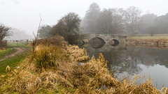Waverley Abbey (THE NUTTY PHOTOGRAPHER) Tags: waverleyabbey mistymorning mist lake trees wetreflection reflections bridge