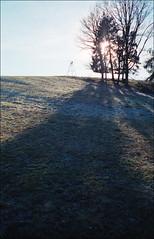 Weidmanns Sonnenplatz (fluffisch) Tags: fluffisch steinbergdeckenhardt saarland leicam6 rangefinder messucher summiluxm35f14 preasph summilux 35mm analog film kodak portra160