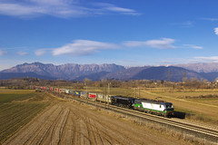 E193.281 (ELL) + E193.6xx (MRCE) - Tricesimo (Gualtiero Palermo) Tags: vectron siemens 193 ell mrce tx txl logistik tricesimo friuli tarvisio verona tec intermodale panorama european locomotive leasing 281