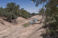 Let the river run (OzzRod) Tags: pentax k1 hdpentaxda2040mmf284 outback darlingriver river riverbed waterhole dry drought tilpa westernnsw savethedarling