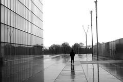 On the track (pascalcolin1) Tags: paris13 bnf homme man pluie rain reflets reflection réverbères lamppost photoderue streetview urbanarte noiretblanc blackandwhite photopascalcolin 50mm canon50mm canon