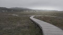 www.vagalumes.es (Jano Sanmartín) Tags: 2019 alanzada arousa atlantico camino invierno lanzada pasarela paseo playa riadearousa riasbaixas tarima terron vagalumes vilanova wwwvagalumeses