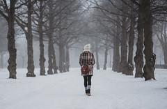winter morning (AlexanderHorn) Tags: winter woman walking snow freezing morning misty moody finland