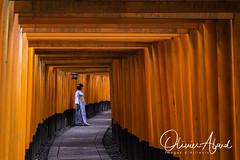 Japan19Ky_IO_0992-1 (oalard) Tags: japan japon canon 1dmkiv kyoto temple tori