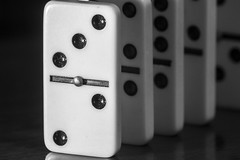Donati's Dominoes (Mario Donati) Tags: thefirstletterofmysurname macromondays nikon d3100 sigma70300mm bw blackandwhite crazytuesday