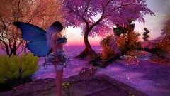 Rose Colored World (Sabreene) Tags: faerie avatar sl secondlife maitreya virtual