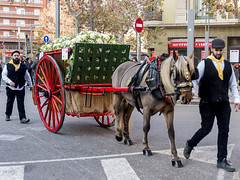 Tres Tombs de Barcelona 2019 (45) (Ismael March) Tags: barcelona trestombsdebarcelona trestombs santantoni
