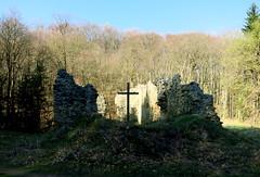 Klosterruine (Don Claudio, Vienna) Tags: klosterruine wienerwald kloster ruine franziskaner riederberg gablitz