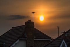 Addlestone sunset (20190409_1) (Graham Dash) Tags: addlestone sunsets sunsetsaddlestone