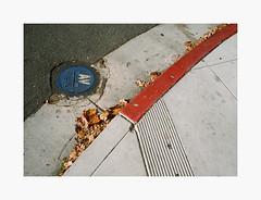 Downtown San Jose | 35mm Kodak UltraMax 400 (ForayIntoFilm) Tags: minolta srt101 35mmfilm analog film filmisnotdead istillshootfilm bayarea california kodak ultramax color downtown sanjose gemini