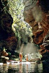 Bell Canyon, Wollongambe Wilderness, Blue Mountains National Park, NSW, April, 1982. (garratt3) Tags: aus bluemountains bluemountainsnationalpark bushwalking film pentax rural kanangaraboydnationalpark takumar kodachrome wilderness australia nsw newsouthwales wollongambewildderness