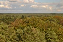 Uitzicht op het bos vanaf de uitkijktoren Besthmenerberg (134FJAKA_1805) (Janko Hoener) Tags: erde earth planetearth motherearth muttererde milchstrase milkyway universum universe europa europäischeunion europeseunie niederlande nederland ommen overijssel wald bos panorama wolken