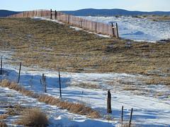 Snow fences...HFF (Jane Lazarz) Tags: douglascountyco larkspurco janeelizabethlazarz walkingcolorado nikon p900 nikonp900 colorado janelazarz breathtakingcolorado walking hiking hff happyfencefriday fence snow winter