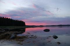 Белое море (kurganovivan) Tags: sea whitesea nature белоеморе море карелия природа север пейзаж landscape sunset