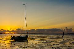 Krabbendijke (Omroep Zeeland) Tags: krabbendijke slik oosterschelde vissersboot eb laag water visser