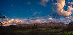 Santa Catalina Mountains at Sunset (Ed Cheremet) Tags: arizona canon60d edcheremet hdr arizonasunset clouds fineartamerica landscape mountains panorama santacatalinamountains sunset tree tucson tucsonarizona