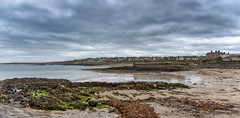 Groomsport (allen.mark45) Tags: groomsport millisle codown countydown northernireland mjdallenphotos ardspeninsula