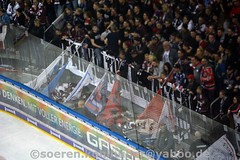 DSC_7415 (Sören Kohlhuber) Tags: eisbärenberlin dynamo eishockey red bull münchen del playoff