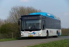 MAN Lion;s Coach Breng 5344 met kenteken 01-BBJ-2 als lijn 33 richting Nijmegen CS op de dijk bij Haalderen 30-03-2019 (marcelwijers) Tags: man lions coach breng 5344 met kenteken 01bbj2 als lijn 33 richting nijmegen cs op de dijk bij haalderen 30032019 bus busse bussen buses lijnbus linienbus öpnv lingewaard gelderland betuwe nederland niederlande netherlands pays bas autobus