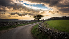round the bend (Phil-Gregory) Tags: nikon naturalphotography naturephotography naturalworld tokina tokina1120mmatx trees tree tracks landscapes lane light sky clouds cloudscape rocks road walls stonewall d7200 derbyshire scenicsnotjustlandscapes ngc