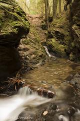 Pucks Glen (rjonsen) Tags: river water glen gorge motion long exposure tripod scotland alba nature