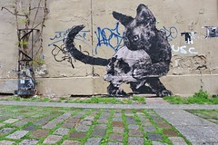 Monsieur Qui_3742 Paris 03 (meuh1246) Tags: streetart paris monsieurqui animaux paris03 chat crâne ericlacan