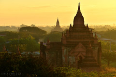 Bagan (Neal J.Wilson) Tags: myanmar burma buddhism buddhisttemple bagan gold golden religion travel travelling temple ancient asia happyplanet asiafavorites