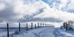 when the sky touches the earth (Wöwwesch) Tags: snow winter walk path blue sky clouds fence