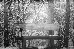 Padtárs (sarkanymacska) Tags: exa sonnar illford xp2 400 dog kutya pad winter tél forest erdő manó